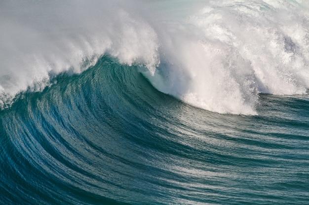 아름다운 곡선을 만드는 파도의 근접 촬영 샷 무료 사진