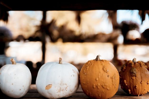 背景をぼかした写真を木製の表面に白とオレンジ色のカボチャのクローズアップショット 無料写真