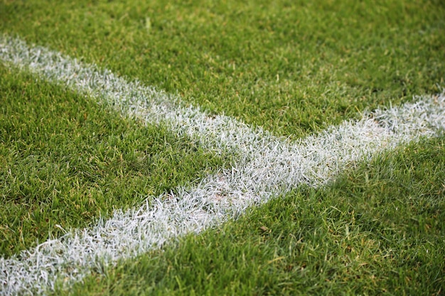 Closeup shot of painted white lines on a green soccer field in germany Free Photo