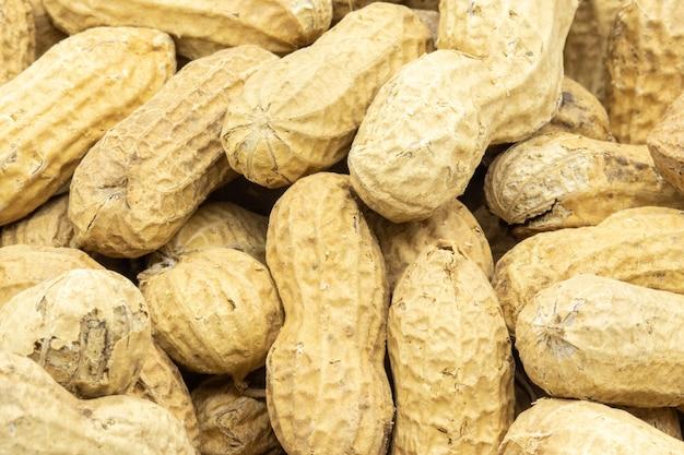 Closeup shot of raw peanuts in shells Free Photo