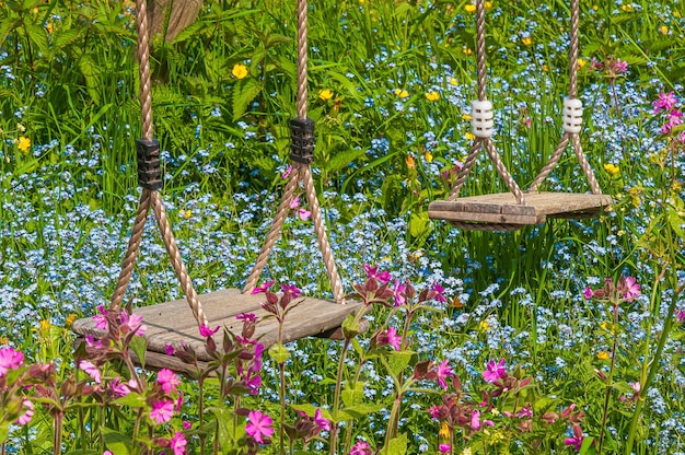 Colpo del primo piano delle due altalene in legno in un campo con fiori colorati Foto Gratuite