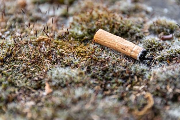 Colpo del primo piano di una sigaretta usata gettata sul terreno erboso Foto Gratuite