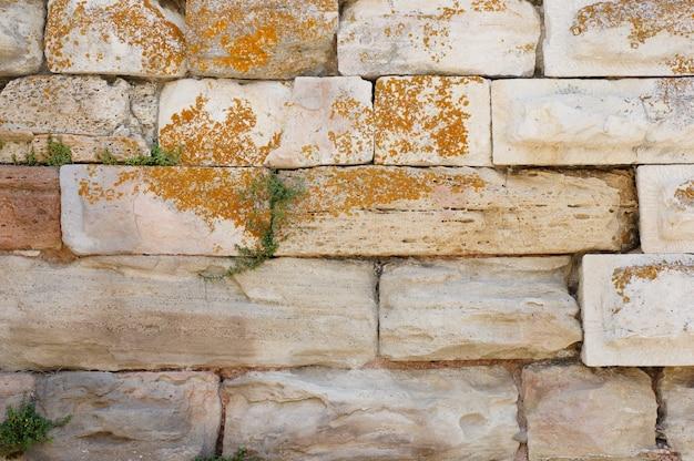Colpo del primo piano di un muro fatto di pietre bianche Foto Gratuite