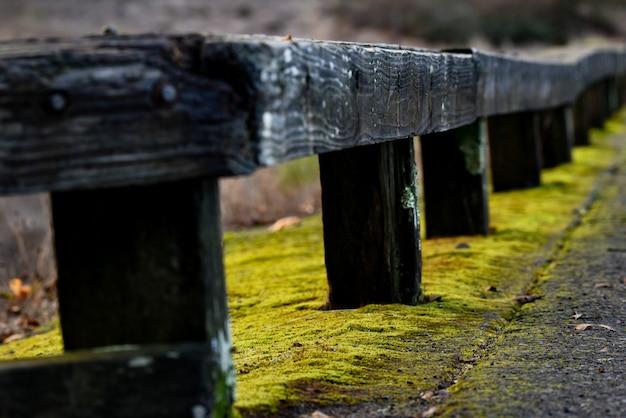 Colpo del primo piano di una ringhiera in legno con muschio giallo sotto di essa Foto Gratuite