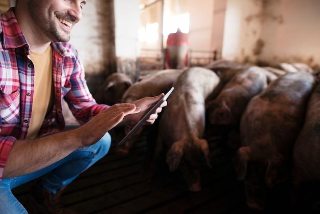 豚の家畜がバックグラウンドで食べている間、養豚場でタブレットに触れる農家のクローズアップビュー 無料写真