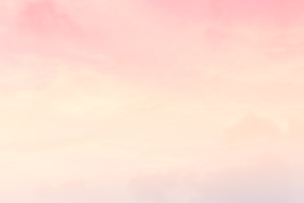 Pastel Free Vectors Stock Photos Psd