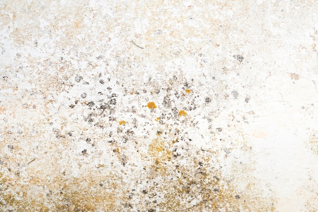 Coarse concrete surface with stains Free Photo