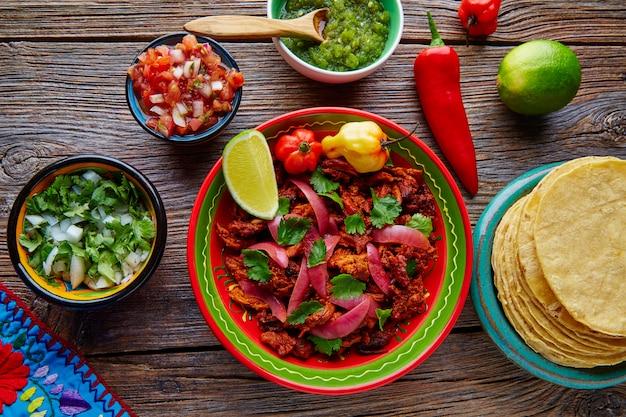 Cochinita pibil mexican platillo food with red onion Premium Photo