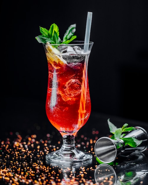 Cocktail with lemon slices ice cubes and mint Free Photo