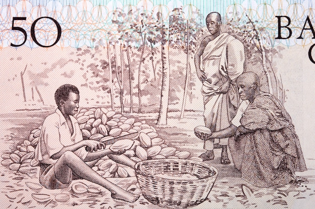 Cocoa farmers from old ghanaian money Premium Photo