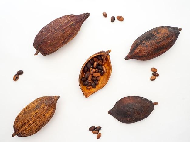 Cocoa pod ,beans and on white background Premium Photo