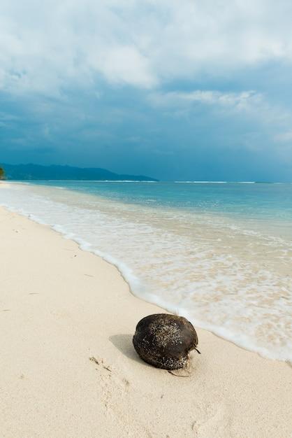 Cocco sulla spiaggia Foto Gratuite