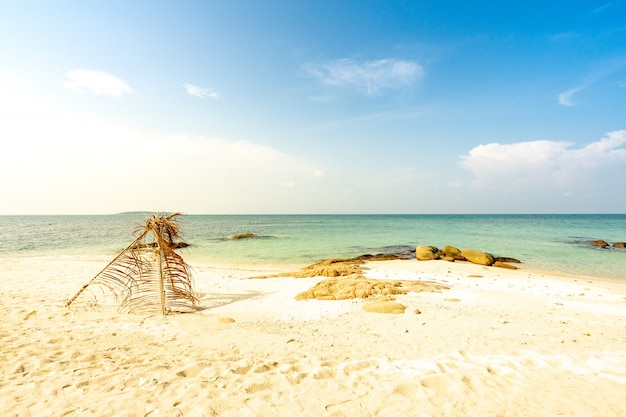 Coconut leaf arch on the beach, summer vacation relaxing time Premium Photo