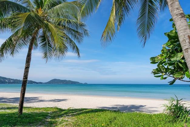 푸켓 파통 해변에서 코코넛 야자수와 청록색 바다. 여름 자연 휴가 및 열 대 해변 배경 개념. 프리미엄 사진