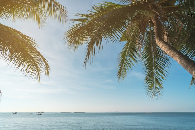 Coconut plam tree with sun and blue sky at tropical beach, summer vacation concept Premium Photo