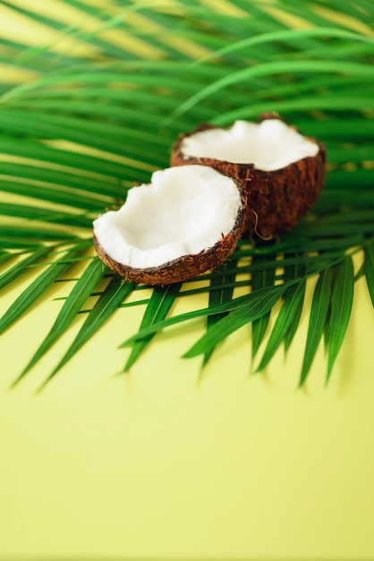 Coconut over tropical green palm leaves. pop art design, creative summer concept. raw vegan food. Premium Photo