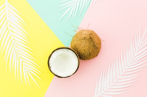 Coconuts with palm leaves on bright table Free Photo
