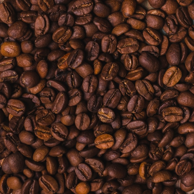 Coffee beans textured background Free Photo