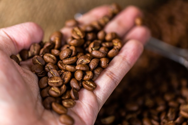 Coffee beans. on a wooden background rotation Premium Photo