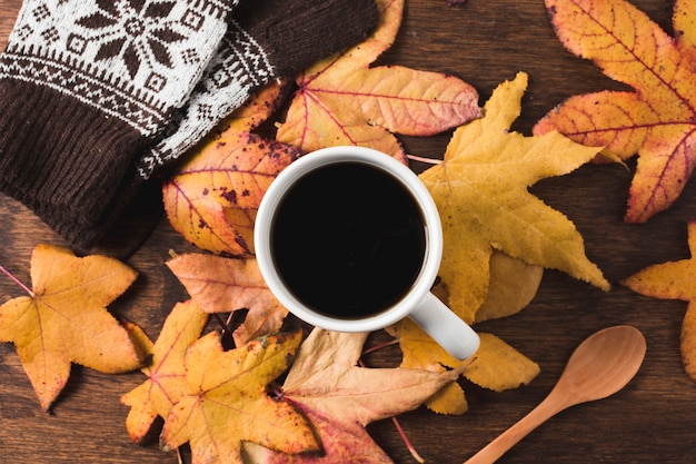 Free Photo Coffee Cup And Gloves On Autumn Leaves Background