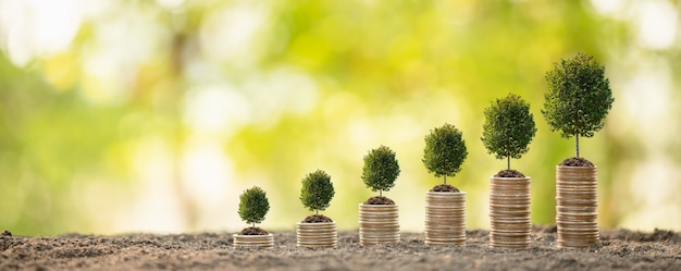 Coin stack on blur  business success or money growing concept Premium Photo