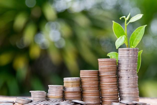 Coin stacking, saving growth symbol Premium Photo