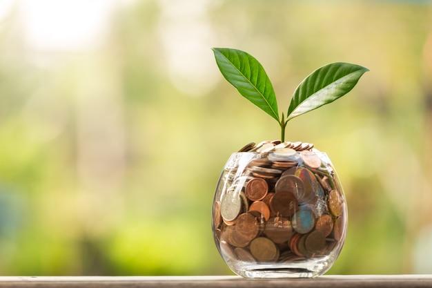 Coins in glass jar Premium Photo