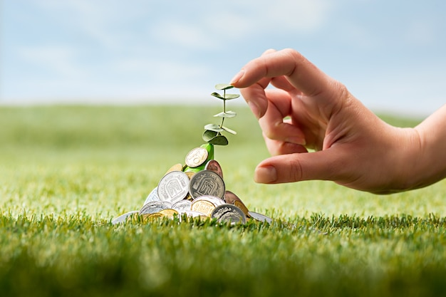 Coins on grass Free Photo