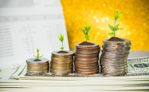 Coins with young plant on table with backdrop blurred of money. Premium Photo
