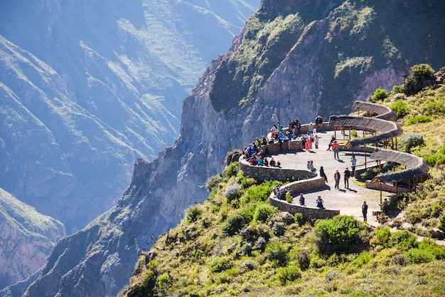 Colca canyon in andes in peru Premium Photo