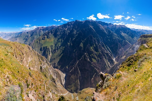 Colca canyon in peru Premium Photo
