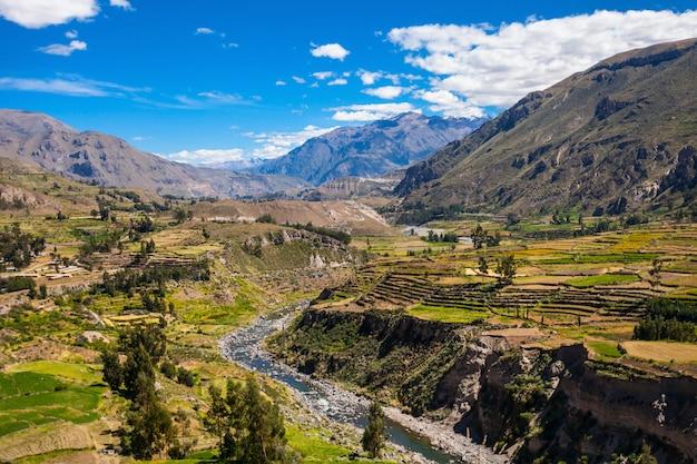 Colca valley in peru Premium Photo