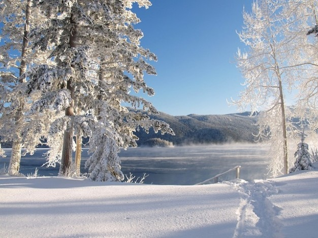 Cold snow water winter ice lake canim | Free Photo