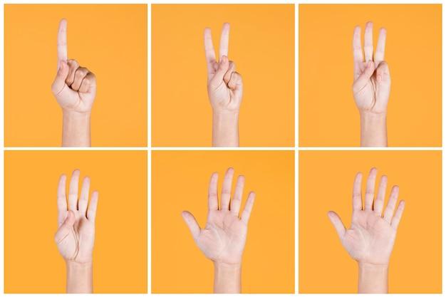 1-5 손가락의 콜라주는 노란색 배경 위에 표시를 카운트 무료 사진