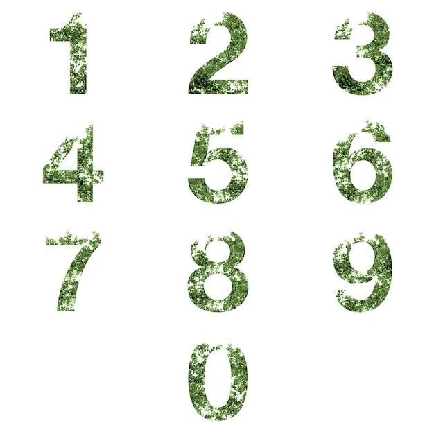 Collection of 0-9 number letter double exposure with ark green leaves isolated on white Premium Photo