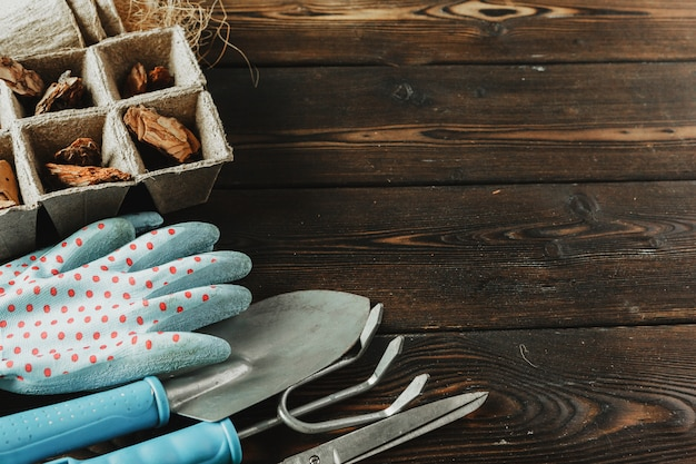 Collection of various house plants, gardening gloves, potting soil and trowel on white wooden background. potting house plants background. Premium Photo