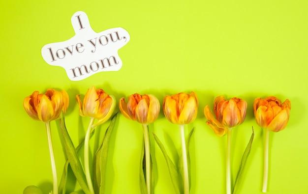 Ряд тюльпанов на фоне coloful с пространством для сообщения. день матери фон. вид сверху Premium Фотографии