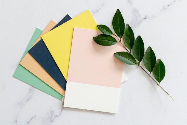 Color swatches mock-up  in flat lay Premium Photo