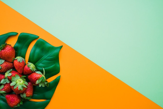 Colored Background With Delicious Strawberries Photo