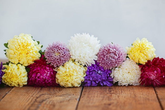 Colorful aster flowers on wooden background. callistephus chinen Premium Photo