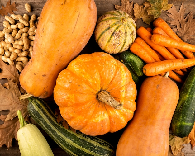 Colorful autumn harvest top view Free Photo