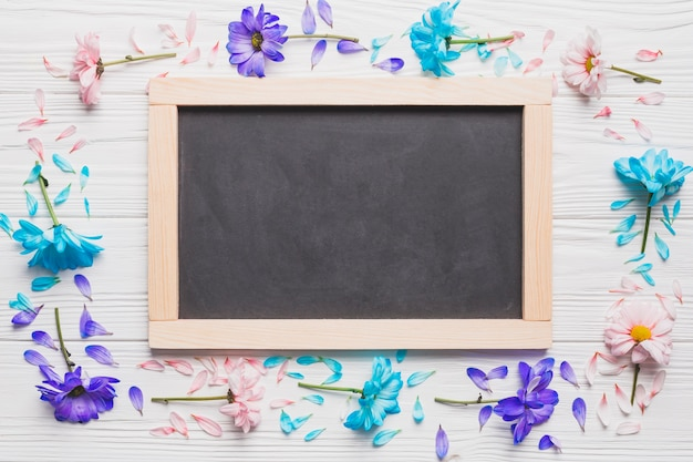 Colorful daisies around chalkboard Free Photo