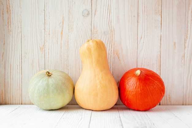 Colorful different pumpkins in front of wooden wall Premium Photo