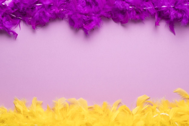 Colorful feather boas on purple background with copy space Free Photo
