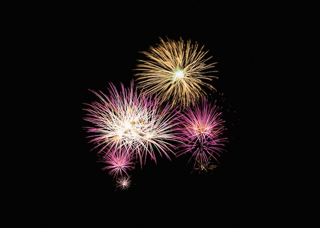 Colorful fireworks explosion in festive celebration Premium Photo