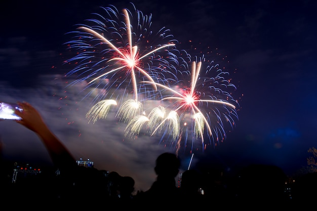 Colorful fireworks at night light up the sky with dazzling display. Premium Photo