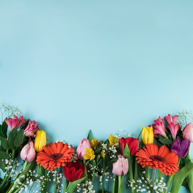 Colorful flowers on blue surface with copy space for writing the text Free Photo