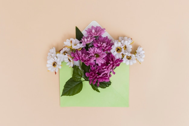Colorful flowers in envelope Free Photo