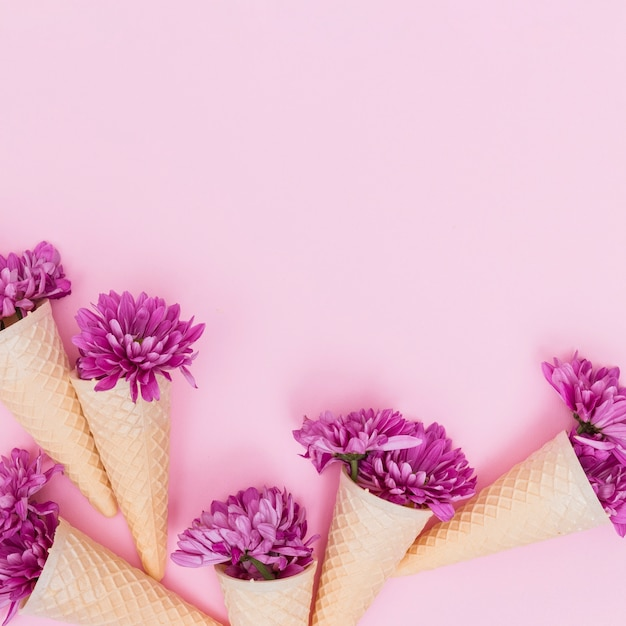 Colorful flowers in waffle cones Free Photo
