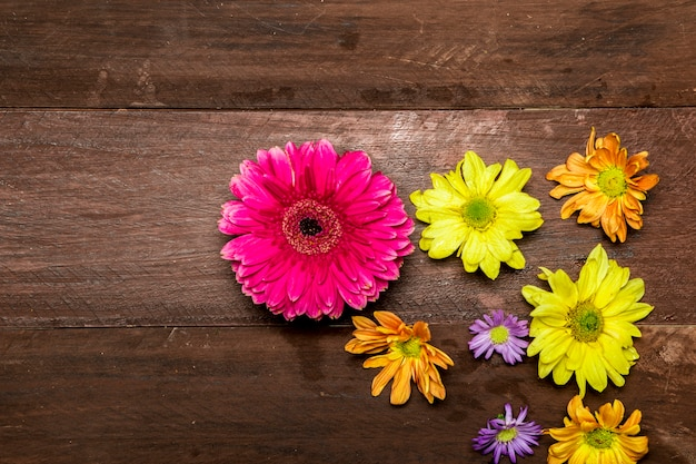 Colorful flowers on wooden background Free Photo